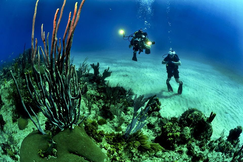 Cestovní pojištění Chartis - potápění