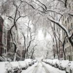 Sezónní POV - náhledový obrázek