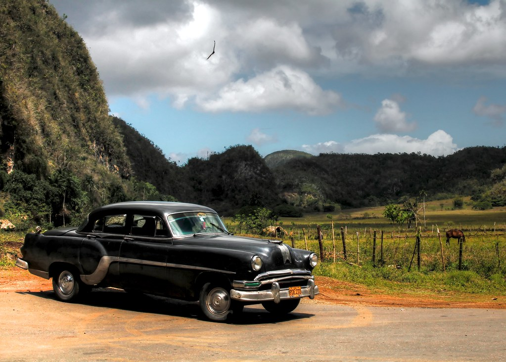 Záruka a autorizovaný servis auta - jak ušetřit